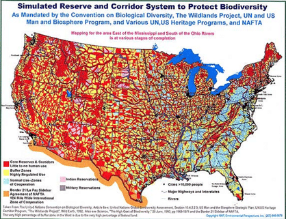 Corridor System for Biodiversity